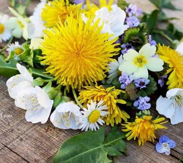 Jestivo cvijeće kao dekoracija torti i kolača