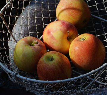 JABUKE: Nekoliko zanimljivosti o omiljenoj voćki
